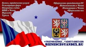 Бизнес услуги в Чехии
