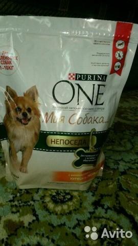 Корм для маленьких собак purina