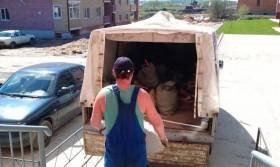 Вывоз мусора ГАЗелью от 1500. Услуги грузчиков от 1000.