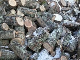 Дрова(дуб,сосна,берёза) с доставкой