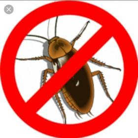 Дезинфекция,травля тараканов и т.д.