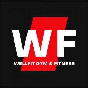Абонемент в фитнес-клуб wellfit