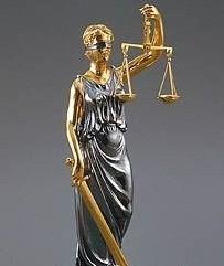 *Услуги юриста