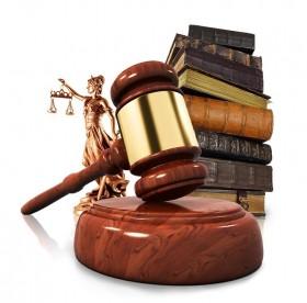 Юридические услуги Общ. орг. Правда